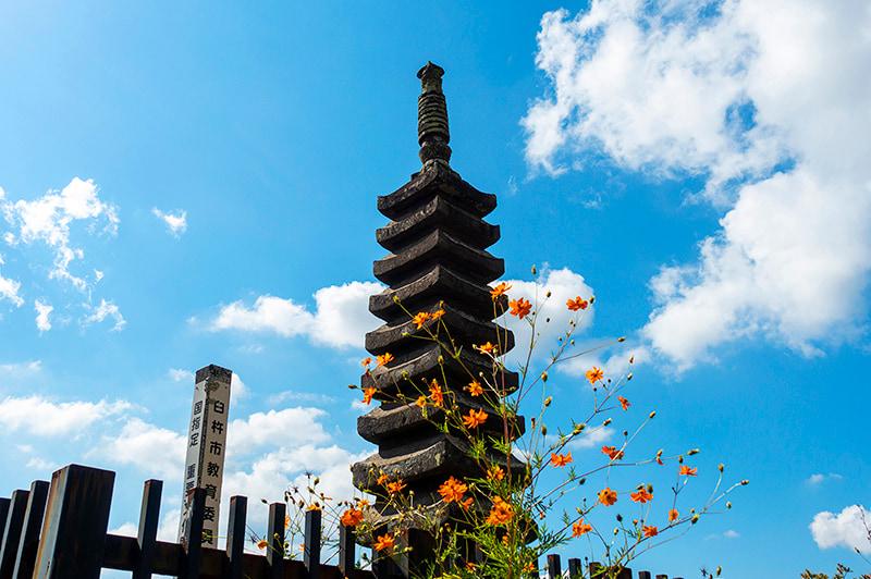 九重塔の写真